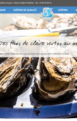 """en ligne d'huîtres """"direct producteur affineur"""", prix des huîtres au kilo détail ou gros, proche de Marennes Oléron"""